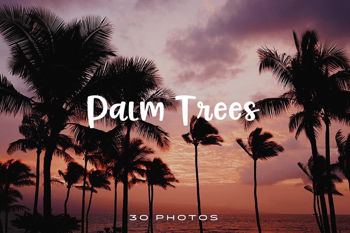 To get you in a tropical mood all year long, here are 30 gorgeous photos of palm trees at your disposal.
