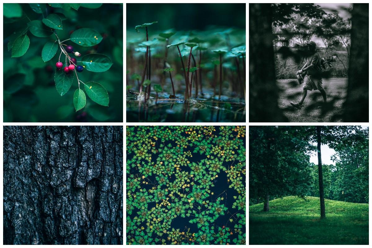 9 Holes Golf Photo Pack (45 Photos) Nature