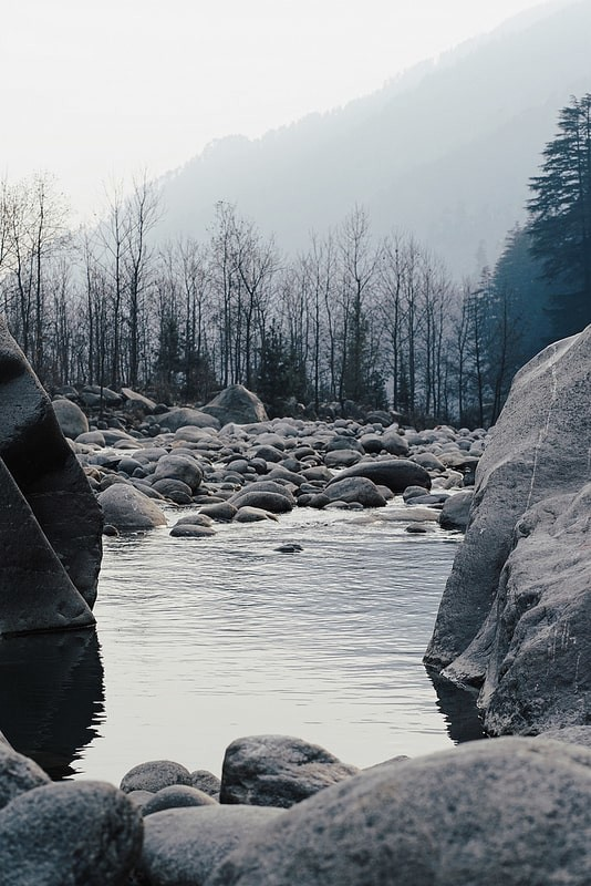 Still-River-in-Manali-with-a-Bare-Forest-and-the-Mountains-in-the-Background