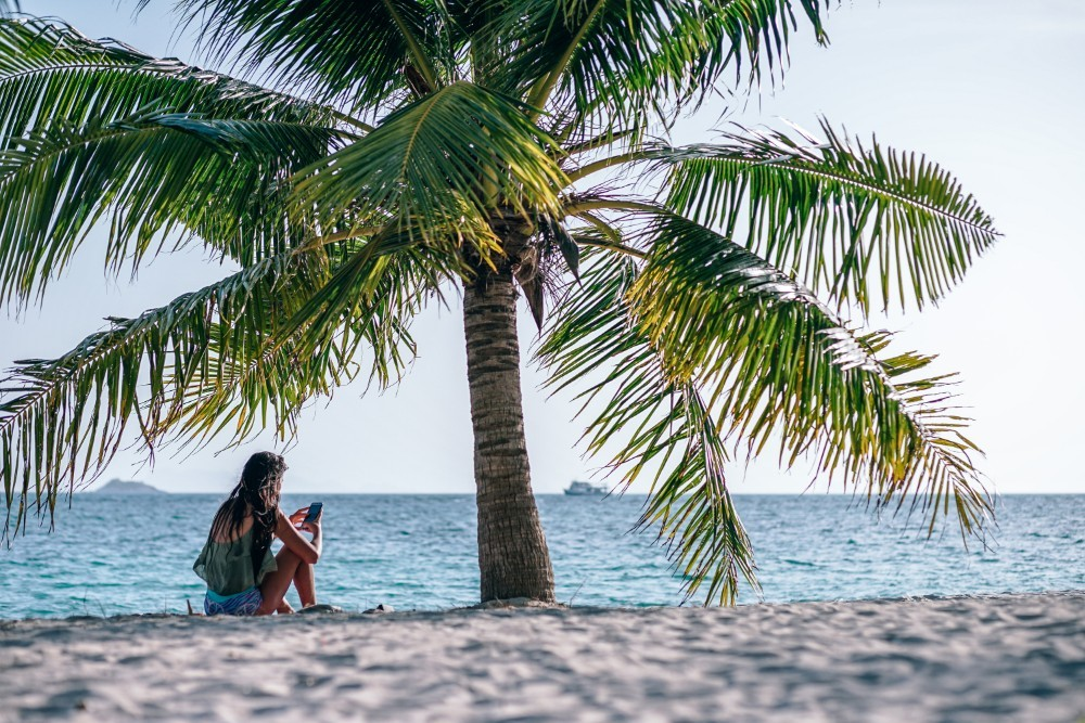 Young Woman Using Her Cell Phone on the Beach below a Palm Tree