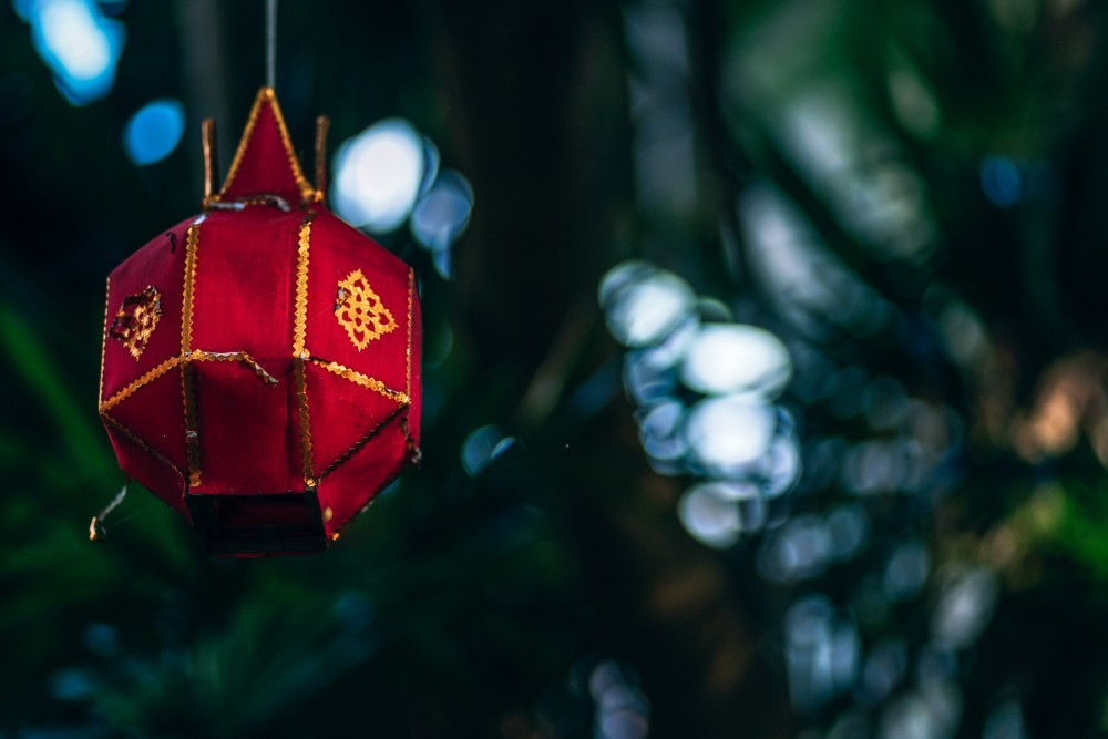 Red Decorative Lamp Hanging from a Tree