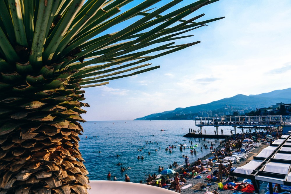 The-Beach-in-Yalta-Photographed-Behind-a-Palm-Tree