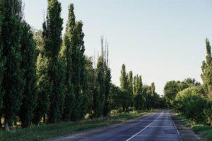 Country Side Road in Dzhankoy Crimea
