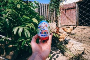 Holding a Kinder Surprise Egg in front of a Chicken Coop