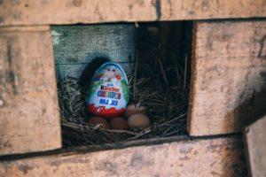Kinder Surprise Egg Hidden in an Egg Nest