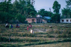Nepali Family Enjoying the Weather at a Village Field