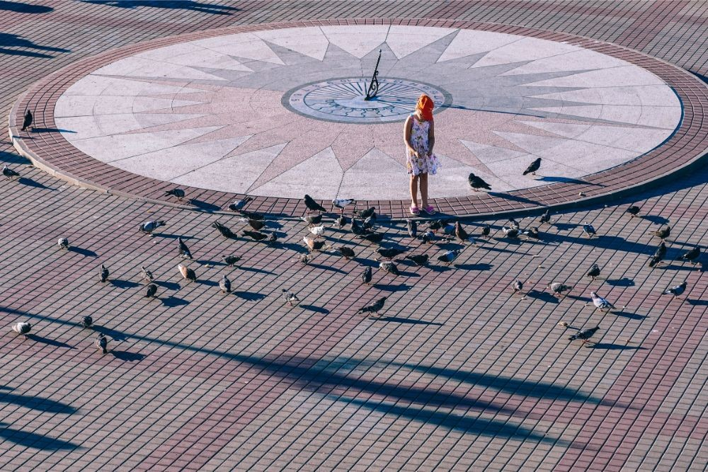 Small Girl Feeding the Birds at a Square in Sevastopol