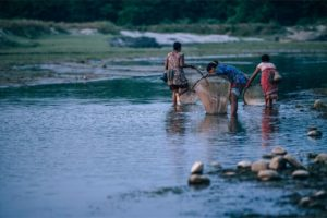Three Nepali Women Catching Fish in a Small River