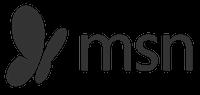 MSN logo symbol