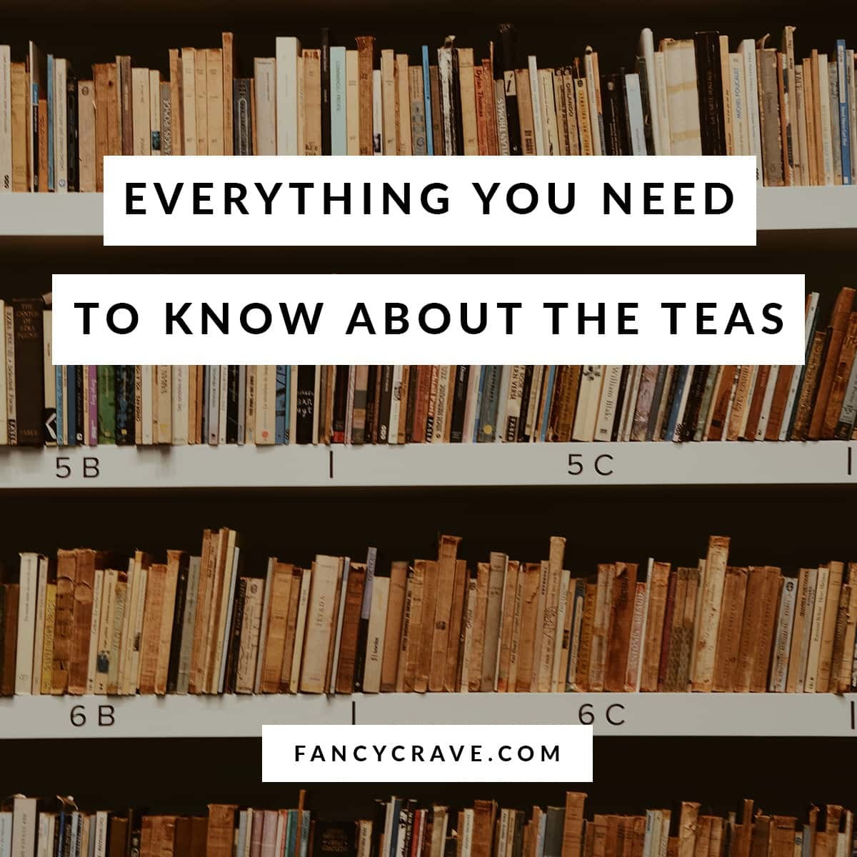 Everything-You-Need-To-Know-About-The-TEAS-min