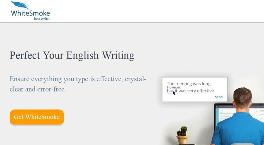 WhiteSmoke grammar tools