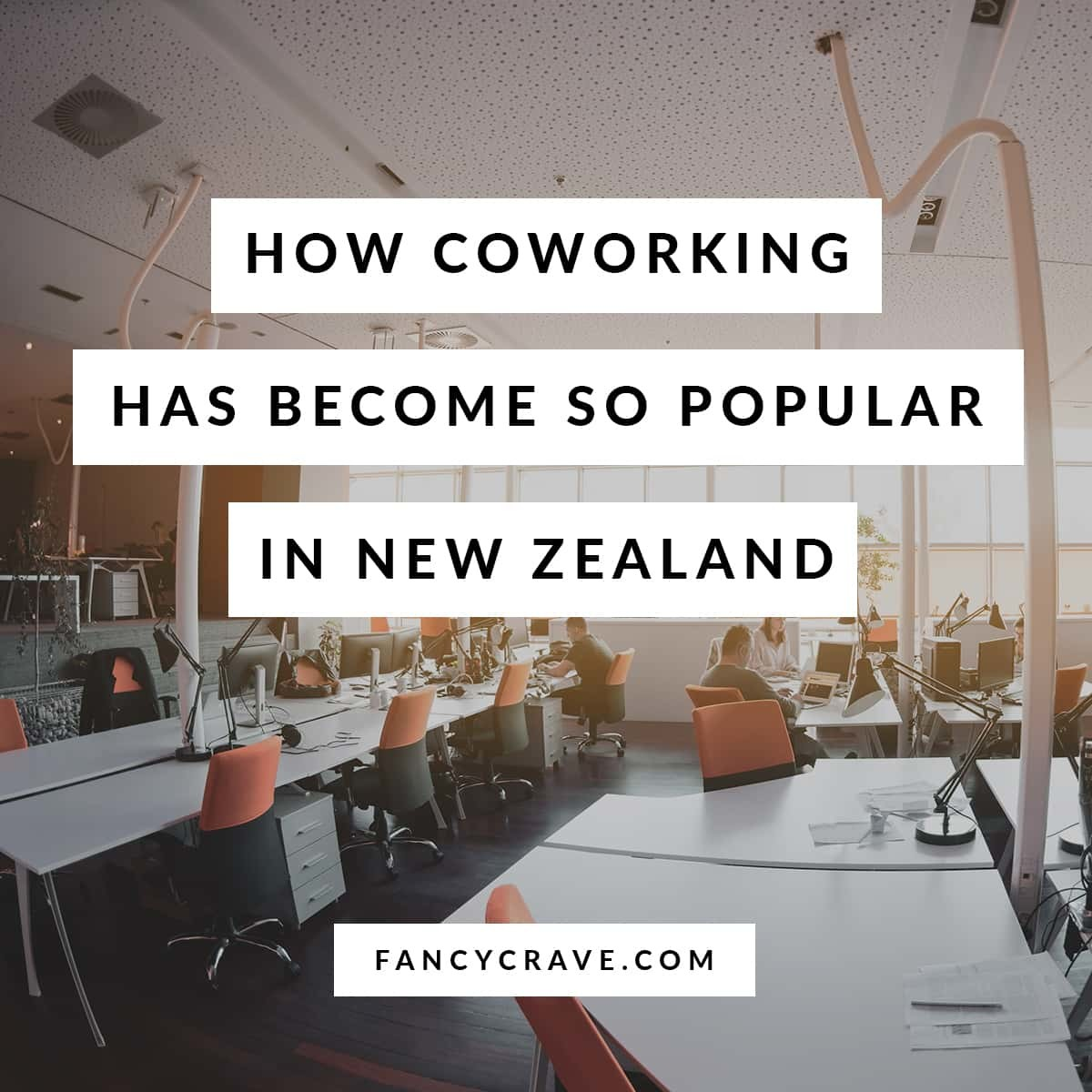 How Coworking Has Become So Popular in New Zealand