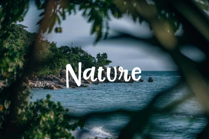 Free Nature Pictures