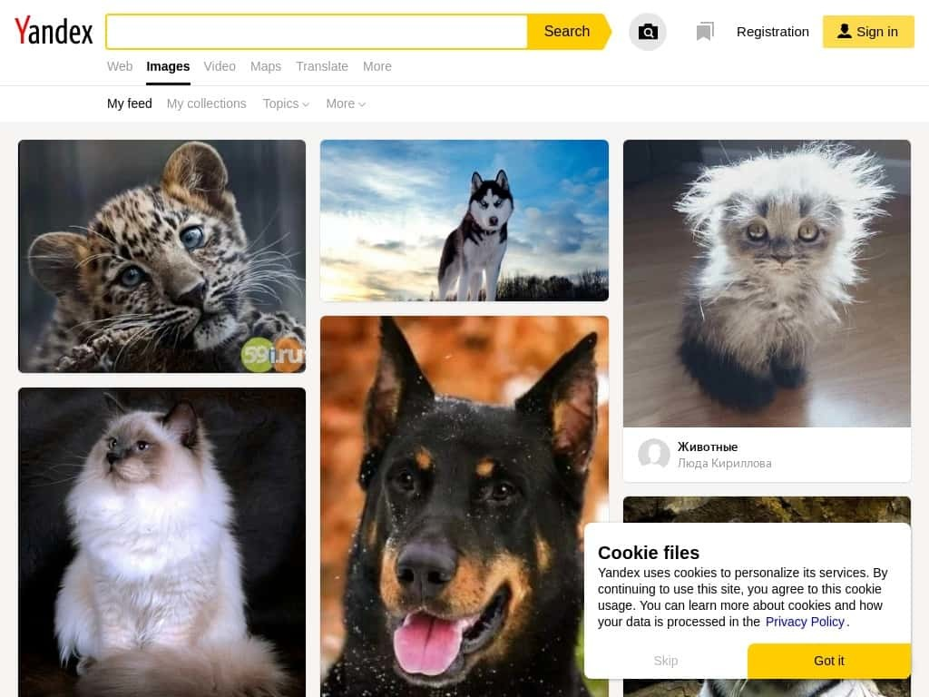 Yandex Image Search min