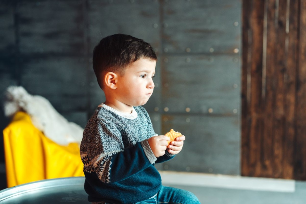 little boy eating delicious cookies PGQM