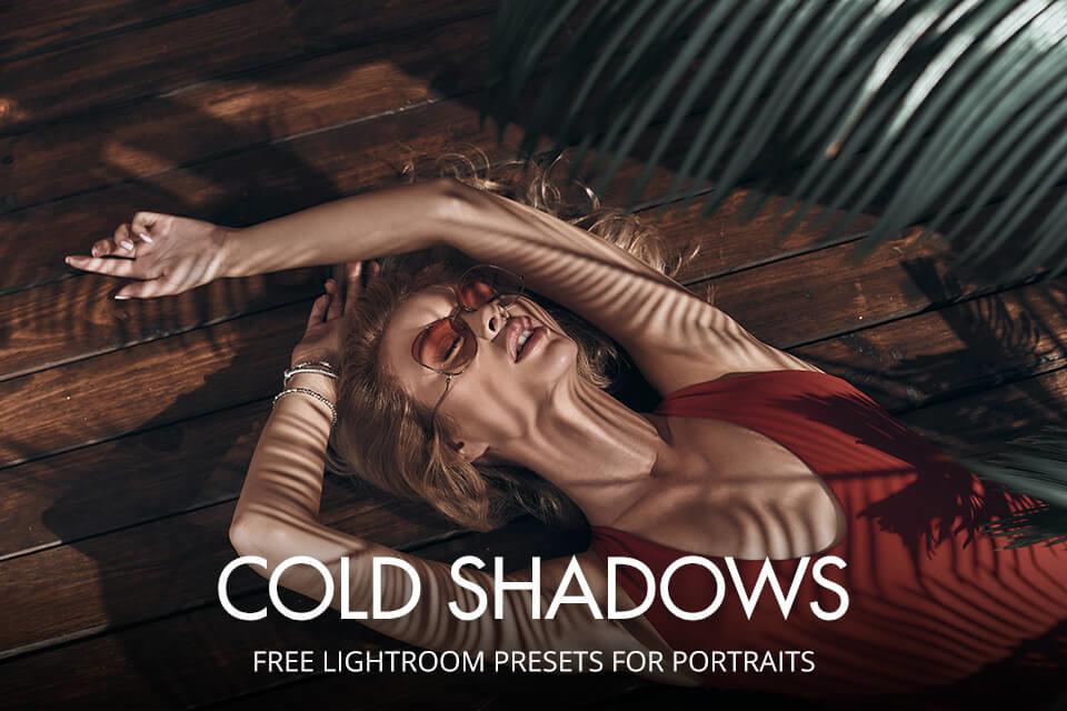 free lightroom 5 presets for portraits