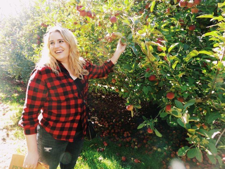 apple picking t wKgXr