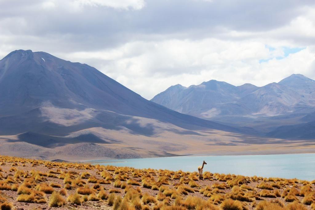 5_Chile