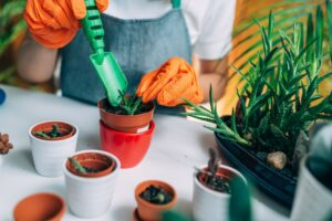 Ten accessories, One garden: A 2021 Guide in Beautifying your outdoor area