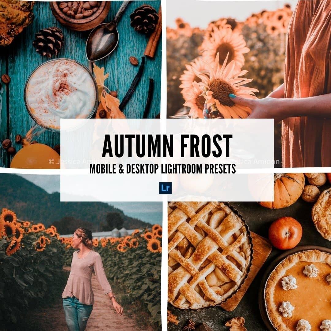 lightroom presets for instagram autumn frost min