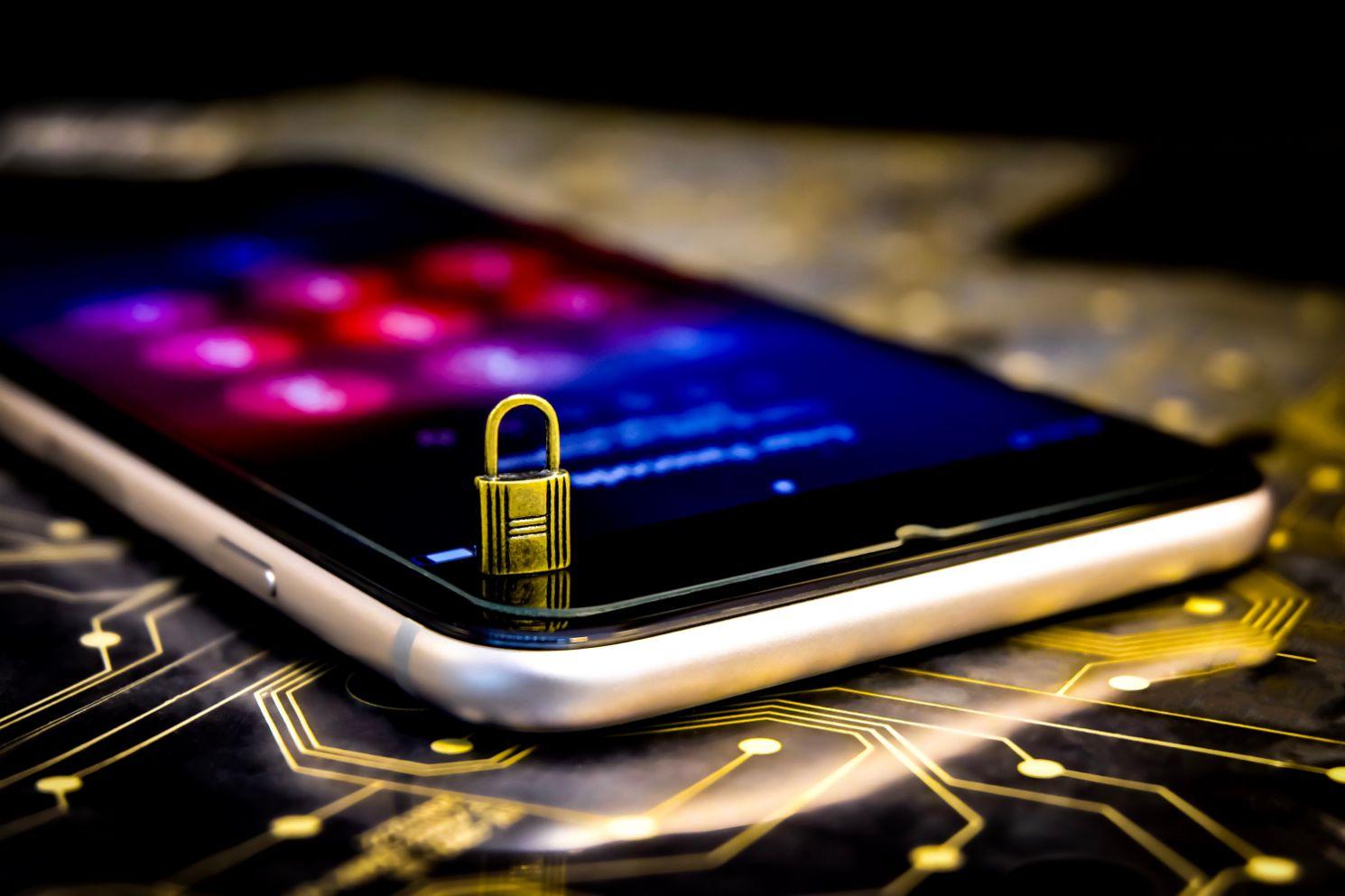 cyber security LERFS