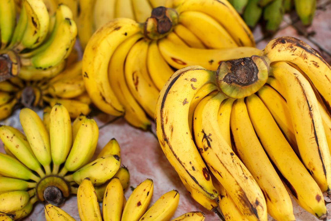 What Can You Do with Banana Seeds?