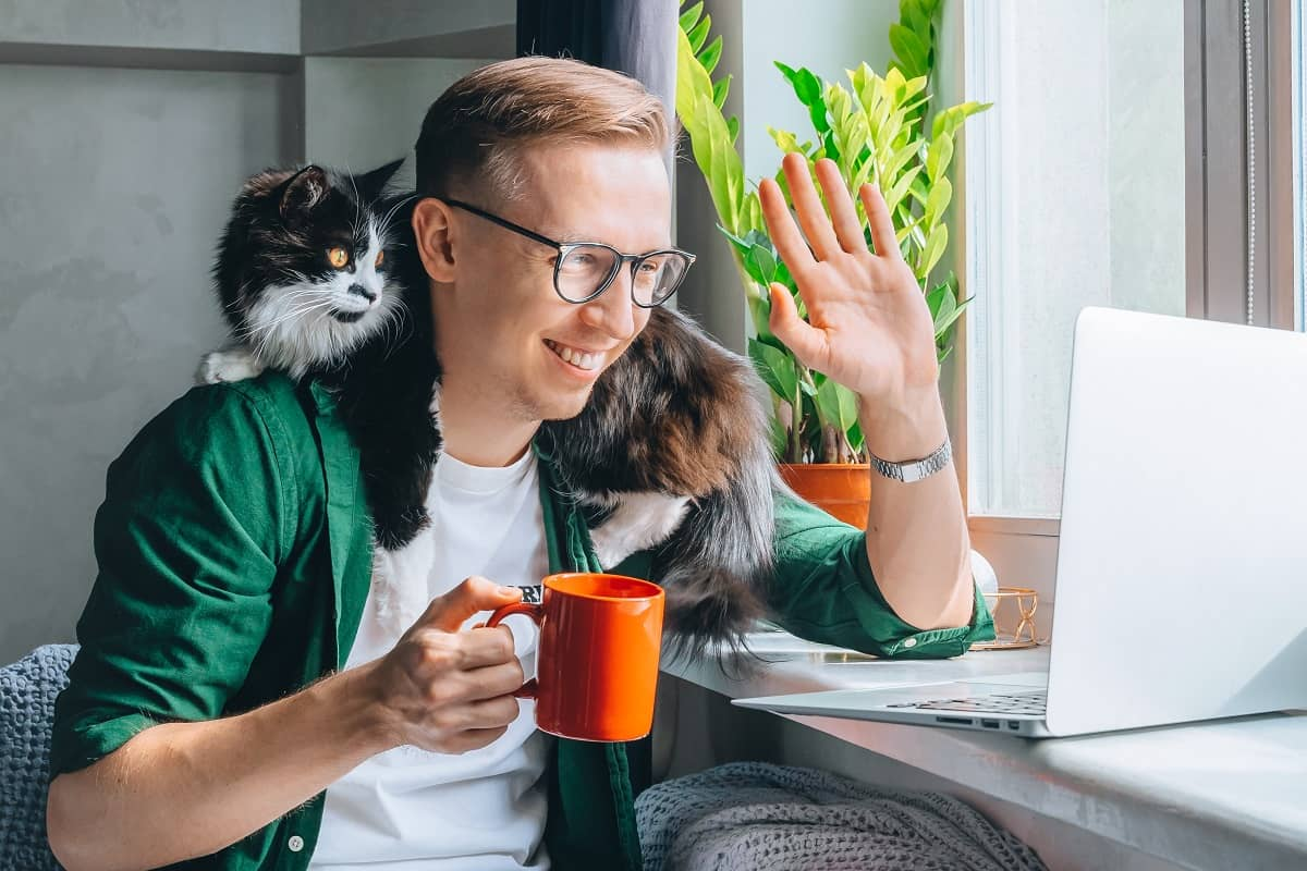 Smiling man with black cat having zoom video call using laptop saying hi to chat members