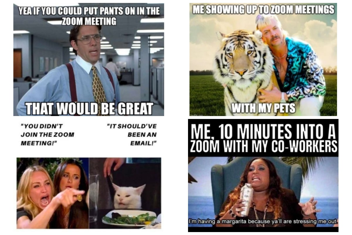 Funny Zoom Memes